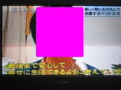 Img_4561burogu